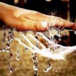Обряды с водой на деньги