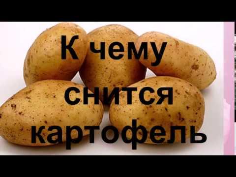 К чему снится картофель Сонник от Ирины