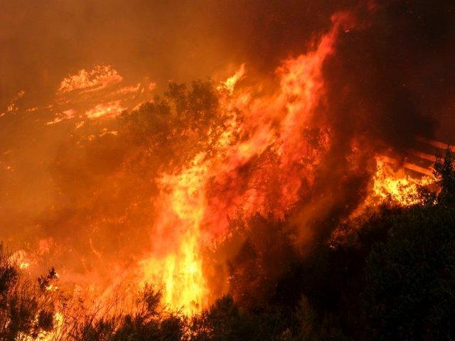 пламя приснилось большое