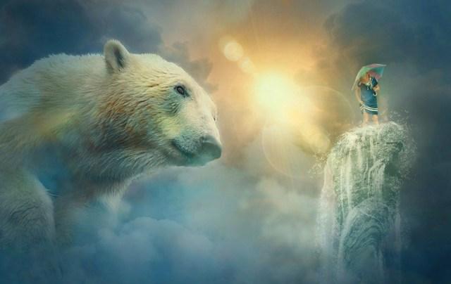 приснился медведь