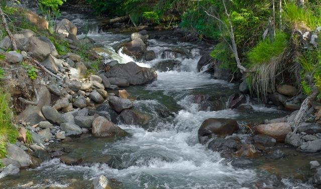 сон река прозрачная
