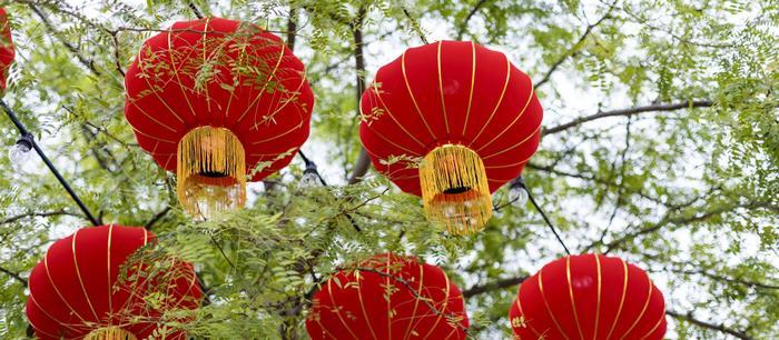 новогодние праздники по Китайскому