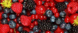 сон ягоды