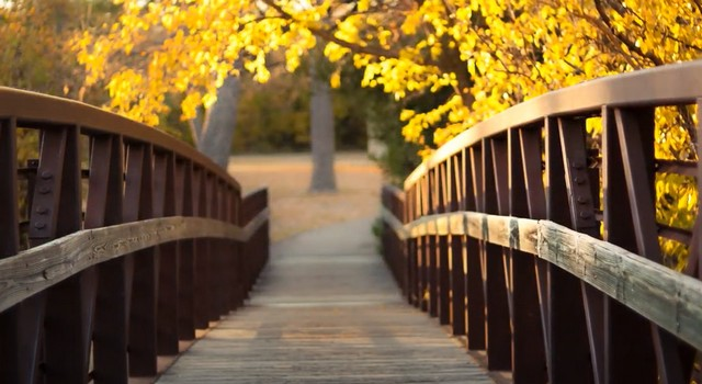 Мост туман грёзы